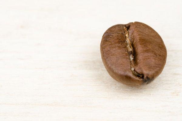 Closeup of a single coffee bean on a white woodgrain surface
